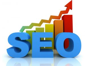 #1 Premier SEO Wellington Agency