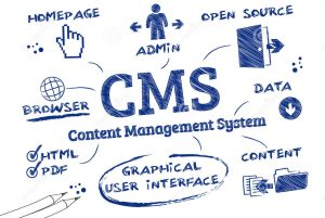 WordPress-CMS-WebDesign499