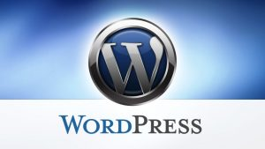 WordPress-WebDesign499